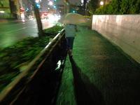 雨の帰り道 / XQ1 - minamiazabu de 散歩