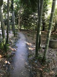 お散歩 - owl'sbread