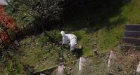 芝刈り - 小太郎の白っぽい世界