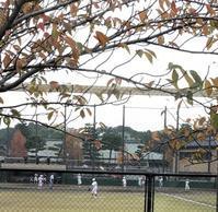 俳句は楽し - 勉強、畑、ときどき野球