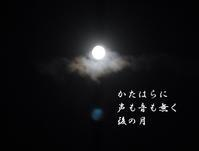 十三夜 - 螺子花便り