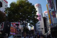 11月6日(月)の109前交差点 - でじたる渋谷NEWS