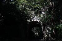 11.5 鎌倉文学館 - 週末はソニーα6500でぶらり鎌倉・湘南散歩!