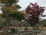 我慢くらべ(爆)。──「そば処 ふじ田」@猪苗代 - Welcome to Koro's Garden!