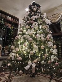今年のクリスマスツリーは・・・? - BEETON's Teapotのお茶会