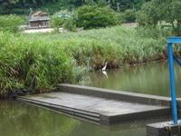 城崎温泉と丹後半島 その4 - 昭和薬局ブログ