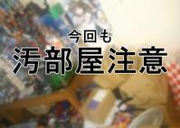【週末日記】デカイTVとPS4を買う計画②~室内で開拓と建造編~…等 - BOB EXPO