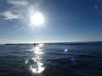 やはりいいもんだ - AFRO SURF