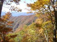 小津権現山 (1,157.8M)  登頂 編 NO 3 - 風の便り