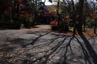 山ノ内あたりの秋 - フォトな日々