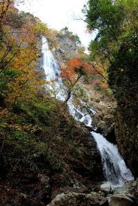 天滝の秋 - 丹馬のきょうの1枚