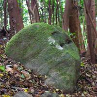 【宇佐神宮御神体】Vol.7巨石は伝えたがっている【大元神社】 - Miemie  Art. ***ココロの景色***