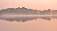 優しい色に染まる頃 @ 水上池の朝 - 東大寺が大好き
