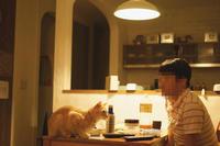 食事はお伴します。 - 夫婦ふたりと猫いっぴき。