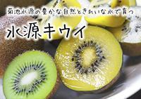 水源キウイ先行予約の受付スタートします!無農薬、無化学肥料で育てた熊本県菊池水源産のキウイです! - FLCパートナーズストア