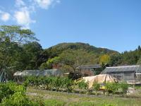 日毎と深まる秋と紅葉 - オープンガーデン villapawa land