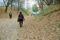 コナラの落ち葉とそろそろタイヤ交換 - 照片画廊