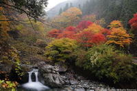 ミタライの森流れる水は大峰ブルー - ratoの山歩き