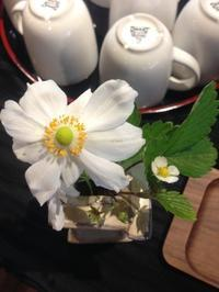 笑い - 空似 - お茶畑の間から ~ Ke-yaki Pottery