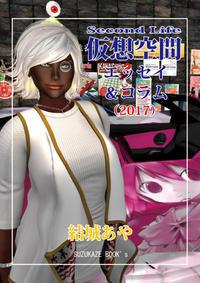 電子書籍■仮想空間Second Life エッセイ&コラム(2017) - 仮想世界の多重人格 Multiple personality of virtual world