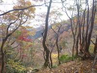 今日のお気に入り写真 笙ケ岳 (908.3M) に登る - 風の便り
