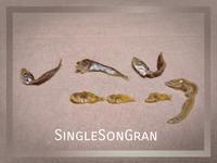 ちりめんモンスター - SingleSonGran