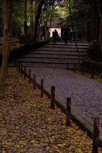 京都法然院 - 雪譜らgo!  by 雪国親父
