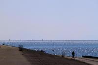 きらきら光る海。 - 青い海と空を追いかけて。