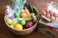 無農薬・減農薬のお野菜便♪ - キラキラのある日々