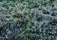−3℃ - 源爺の写真館