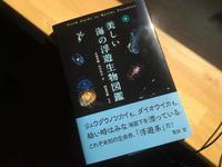 美しい海の浮遊生物図鑑 - 奄美大島 ダイビングライフ    ☆アクアダイブコホロ☆