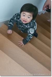 嗚咽した夜。。。階段登りがマイブームな王子 - 素敵な日々ログ+ la vie quotidienne +