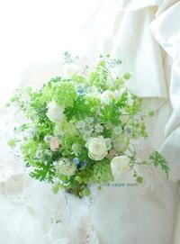 クラッチブーケ 一会風 八芳園様へ、グリーンの中のブルースター  - 一会 ウエディングの花