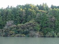 秋深まり、葉の色も、、、 - 千葉県いすみ環境と文化のさとセンター