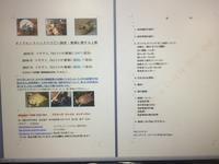 飼育ノウハウと記録 - ダイヤモンドバックテラピンの飼育日記