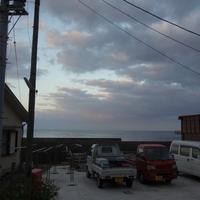 05 NOV 2017 中之島 - OLIVE VERDE
