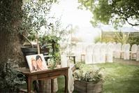 緑が大好き - PontNeuf weddingのブログ