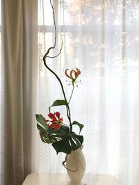 石化柳  グロリオサ モンステラ  桜 シャガ - **おやつのお花*   きれい 可愛い いとおしいをデザインしましょう♪