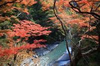 秩父 大滝地区 - belakangan ini