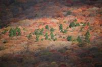 由布岳遠征 - Harimaの写真日記