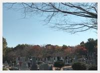 お墓参りと勝浦式タンタン麺他 - ヨウムな生活