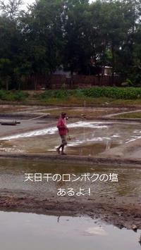 乾季限定東ロンボクの塩田 - ママハナのロンボク日記 Dua