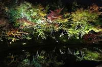京都 高台寺(今年も来たぜ!) - ファインダーの中に惹かれて