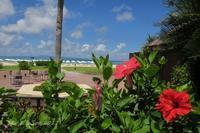 ◆ アリビラから本部へ 7 回目の沖縄、その13 「オクマ」へ (2017年7月) - 空と 8 と温泉と