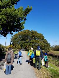 【活動レポ】スケッチ遠足@東浦和 11/12 - 造形+自然の教室  にじいろたまご