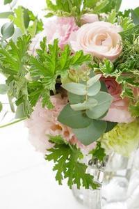 冬雷、ブリ起こし!の冬に春のラナン初登場 - お花に囲まれて