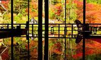 環境芸術の森 - *Hanapepe  Life*