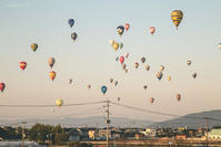 Balloon final - My Palpitation