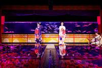 アートアクアリウム2017 京舞(祇園甲部佳つ智さん、紫乃さん) - 花景色-K.W.C. PhotoBlog