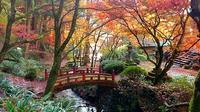 横蔵寺 - 心の写真